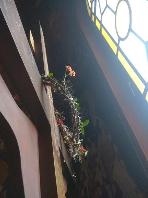 Δέος! Άνθισε το ακάνθινο στεφάνι του Εσταυρωμένου στον Ιερό Ναό Ταξιαρχών της Άρτας - Δείτε ΕΙΚΟΝΕΣ