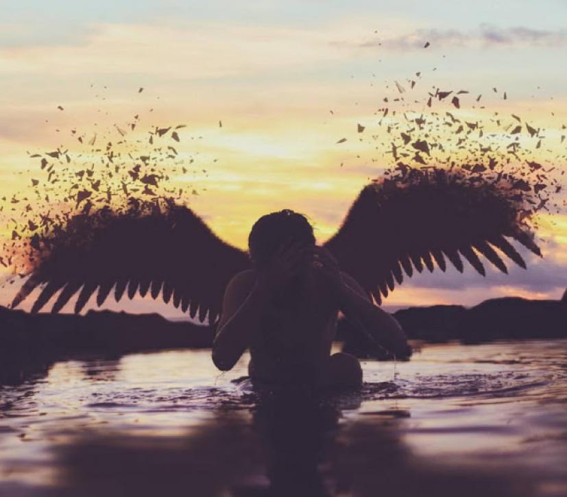 Μεγάλο πουλί ταπεινώνει μικρό πουλί