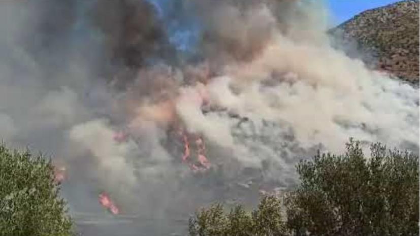 Φωτιά στις Μυκήνες: Εκκενώθηκε ο αρχαιολογικός χώρος- Εγκλωβισμένοι σε  μαντρί | iEllada.gr